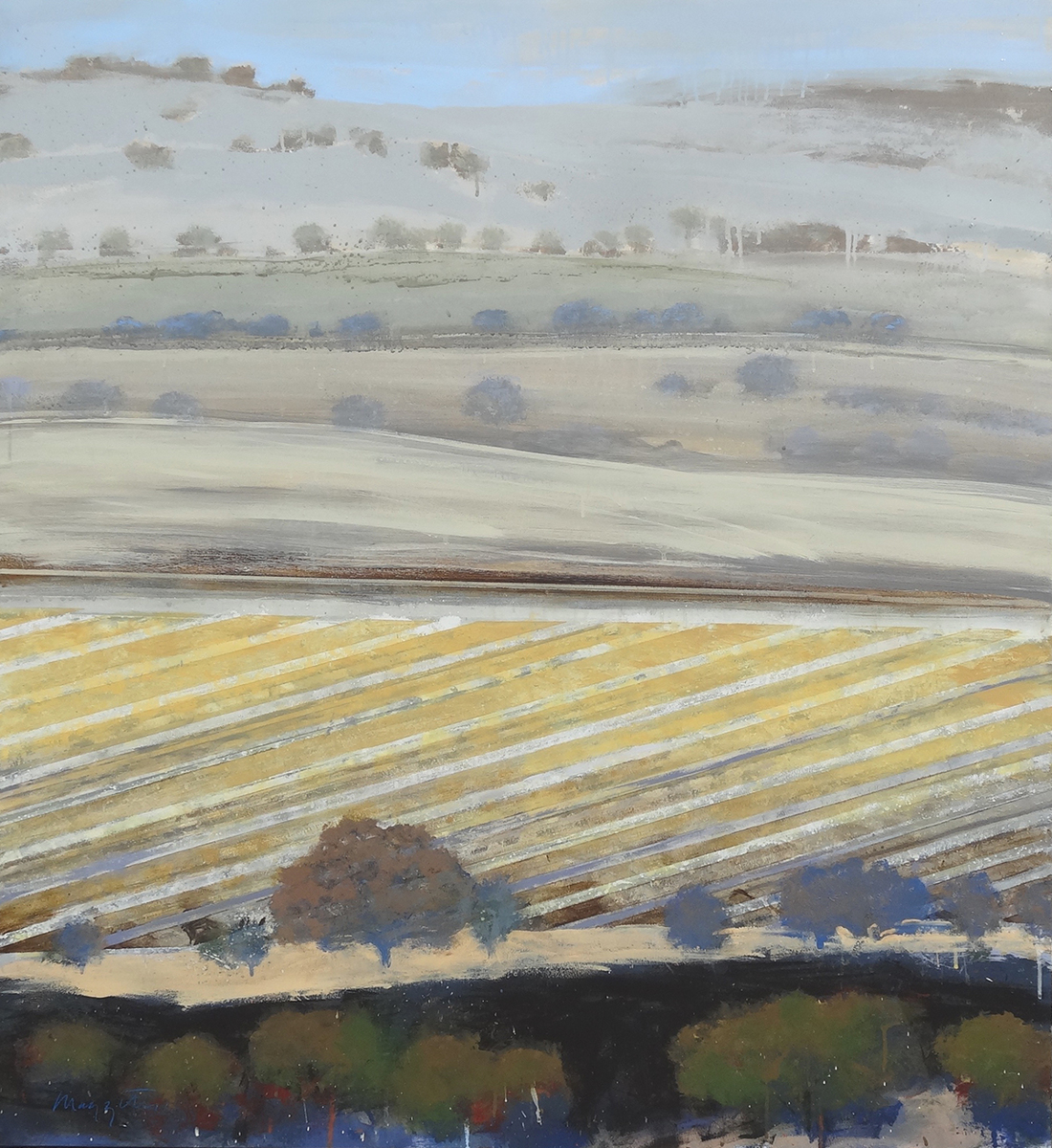 Flowing Field (large view)