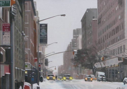 After the Snow: NYC