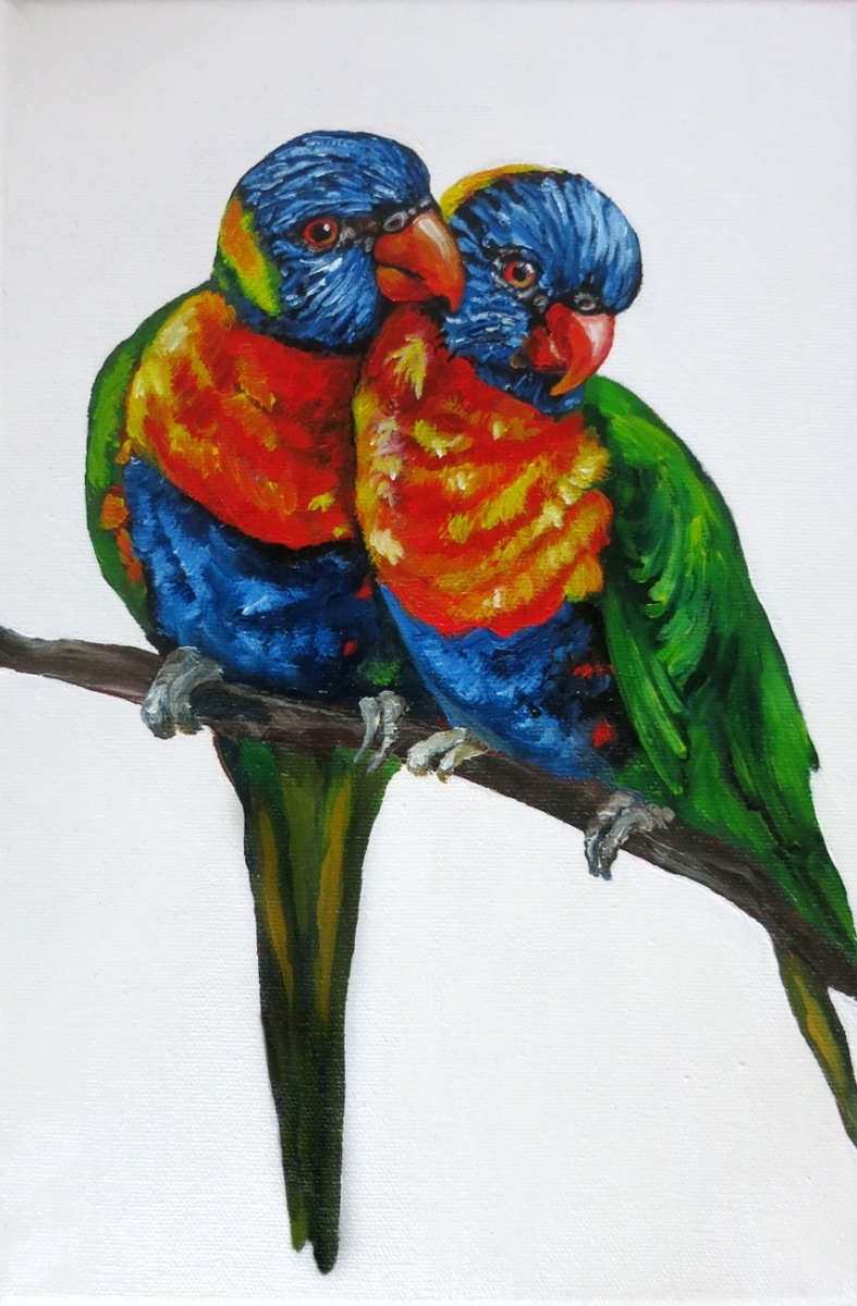 lorikeets (large view)