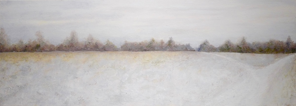 The VCCA in winter, field, 2016 (large view)