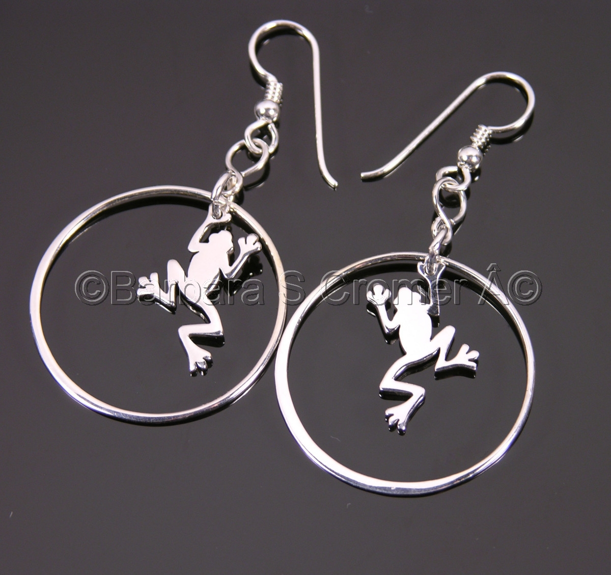 Silver frogs in silver circles earrings (large view)