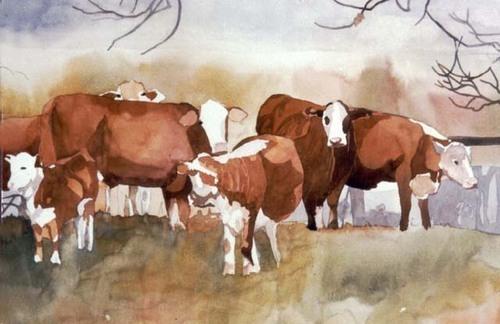 """""""Benton Cows"""" (large view)"""