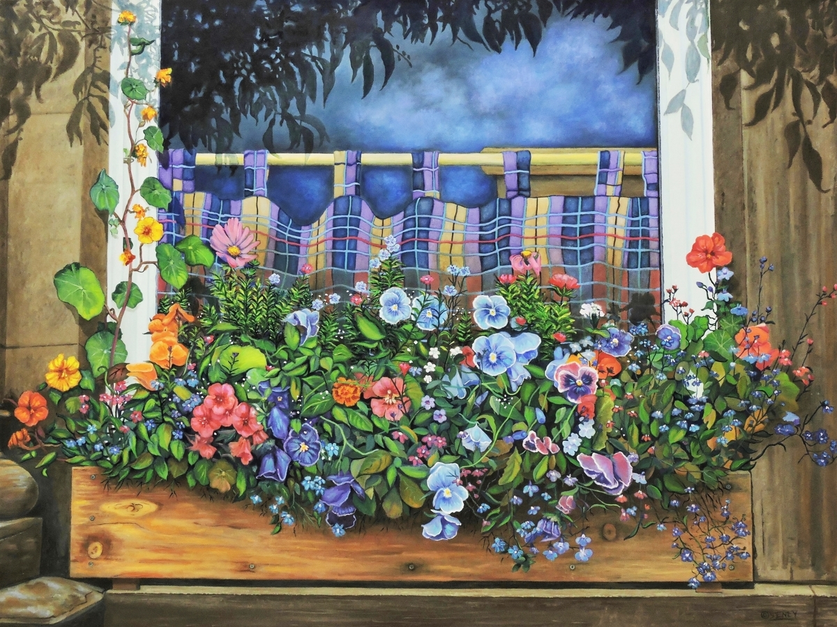 The Window Box (large view)