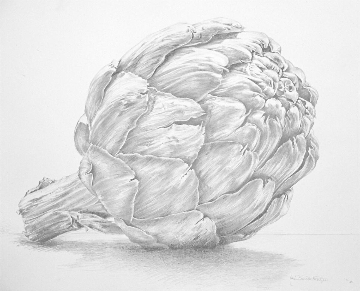 Artichoke (large view)