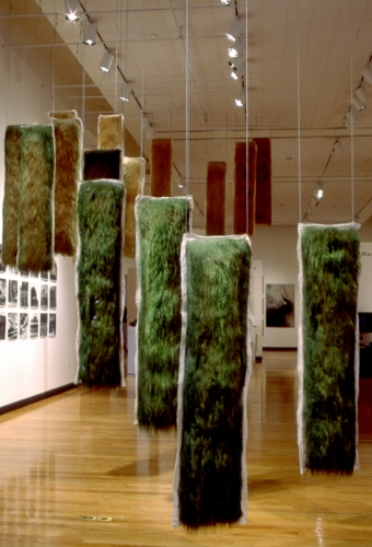 Installation of 17 live and dying grass panels, ceiling mounted, some with embedded photographs. Large-format gelatin silver prints on wall.  Tufts University Art Gallery (large view)