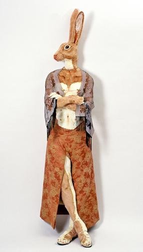 Rabbinoid, female