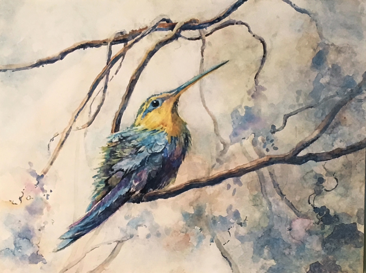 HUMMINGBIRD (large view)