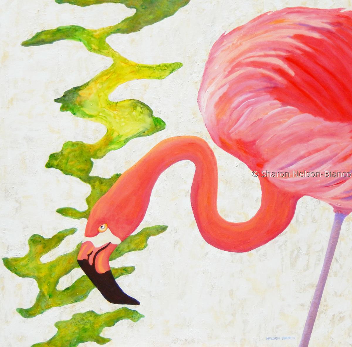 Flamingo Territory (large view)