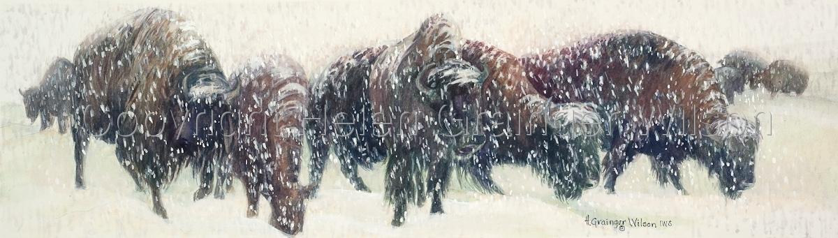 Long, Lean Winter by Helen Grainger Wilson (large view)