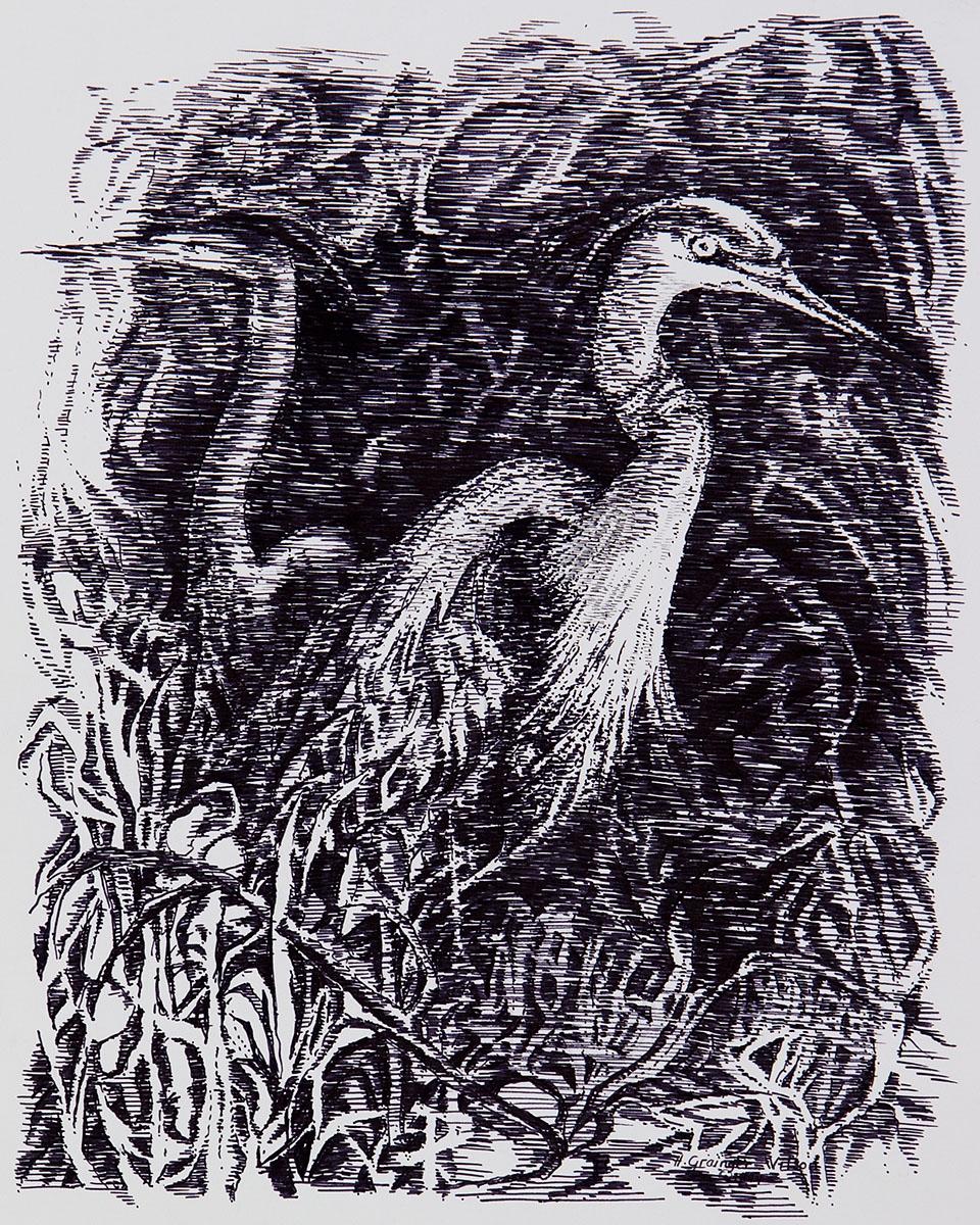 Great Blue Herons by Helen Grainger Wilson (large view)