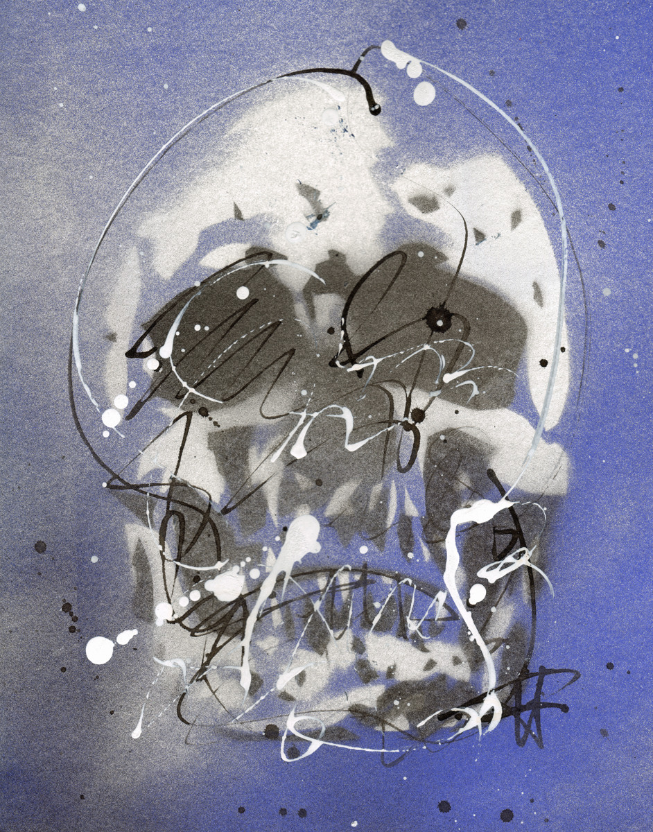 Skull #2 (large view)
