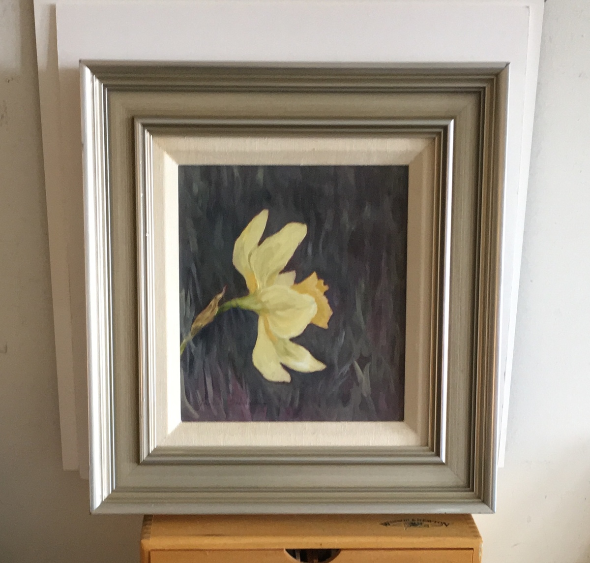 Daffodil Portrait, framed  (large view)