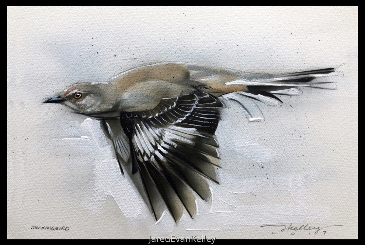 Mockingbird (large view)