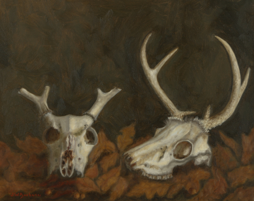 Deer Skulls in the Leaves (large view)