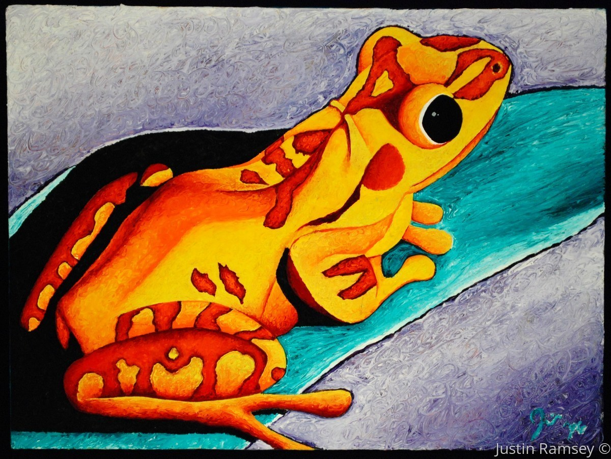 Sunburst Frog (large view)