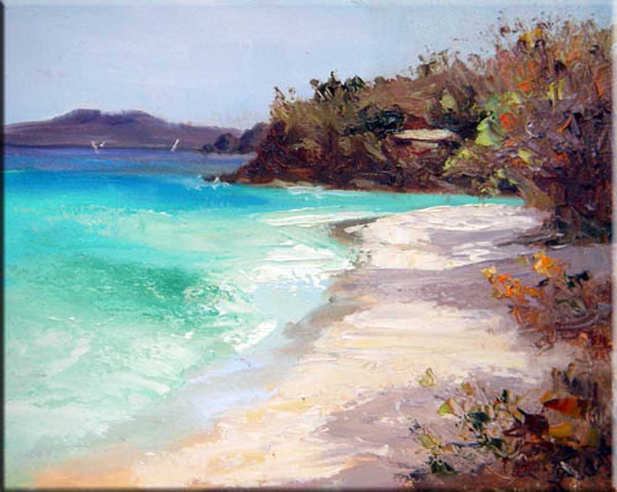 Trunk Bay Beach In Gold  (large view)