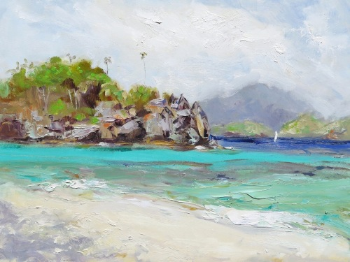 Trunk Bay Cay From Windswept Beach (large view)