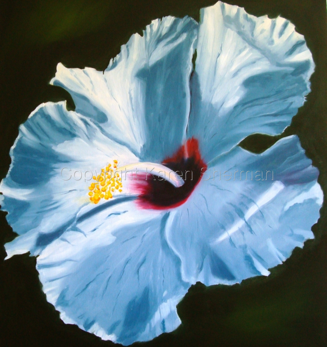 """""""White Hibiscus 3"""" (large view)"""