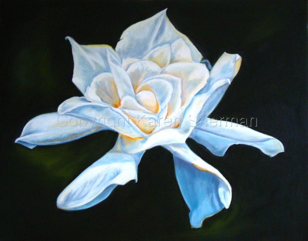 """Gardenia"" (large view)"