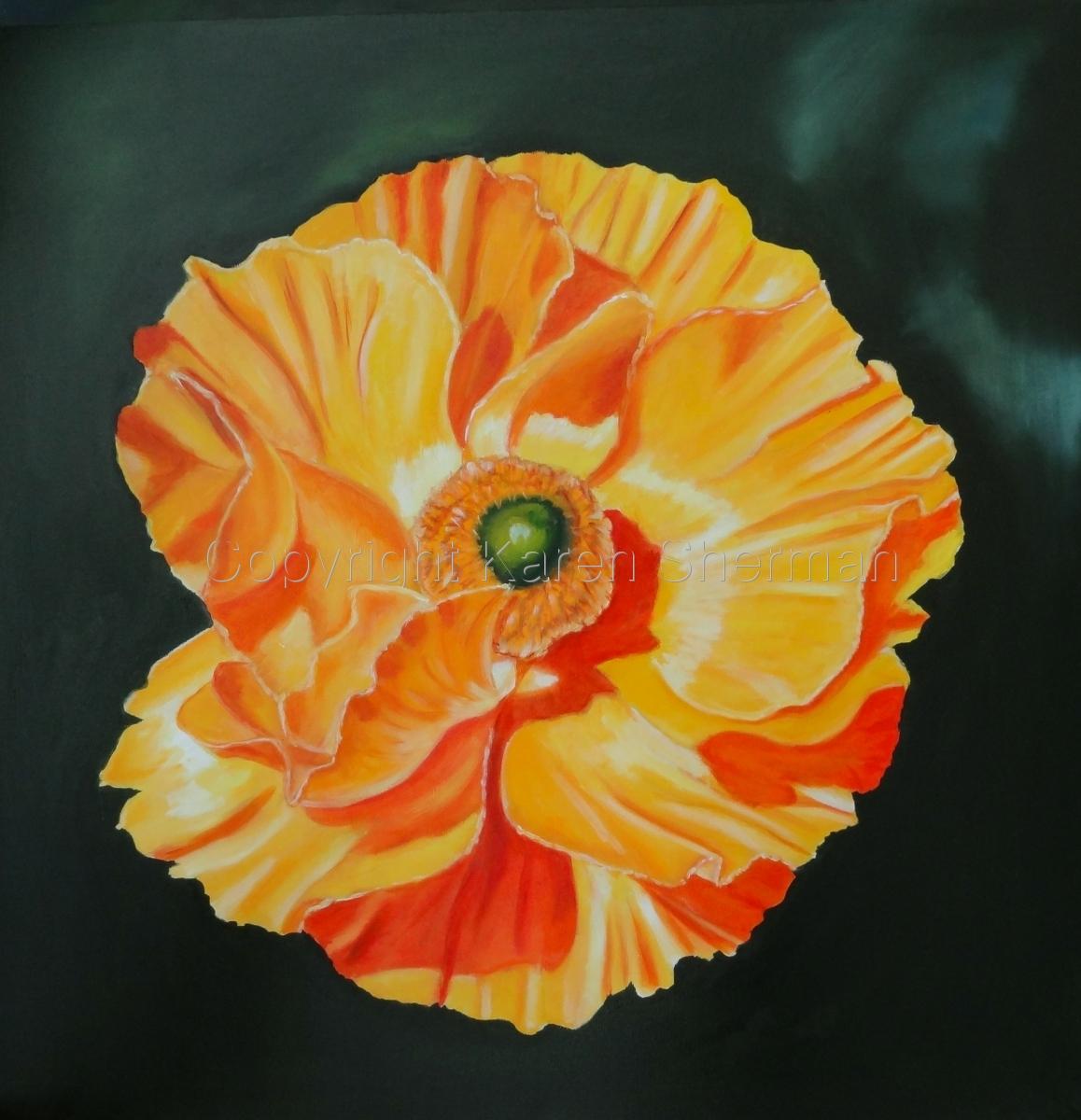 """Yellow Poppy"" (large view)"