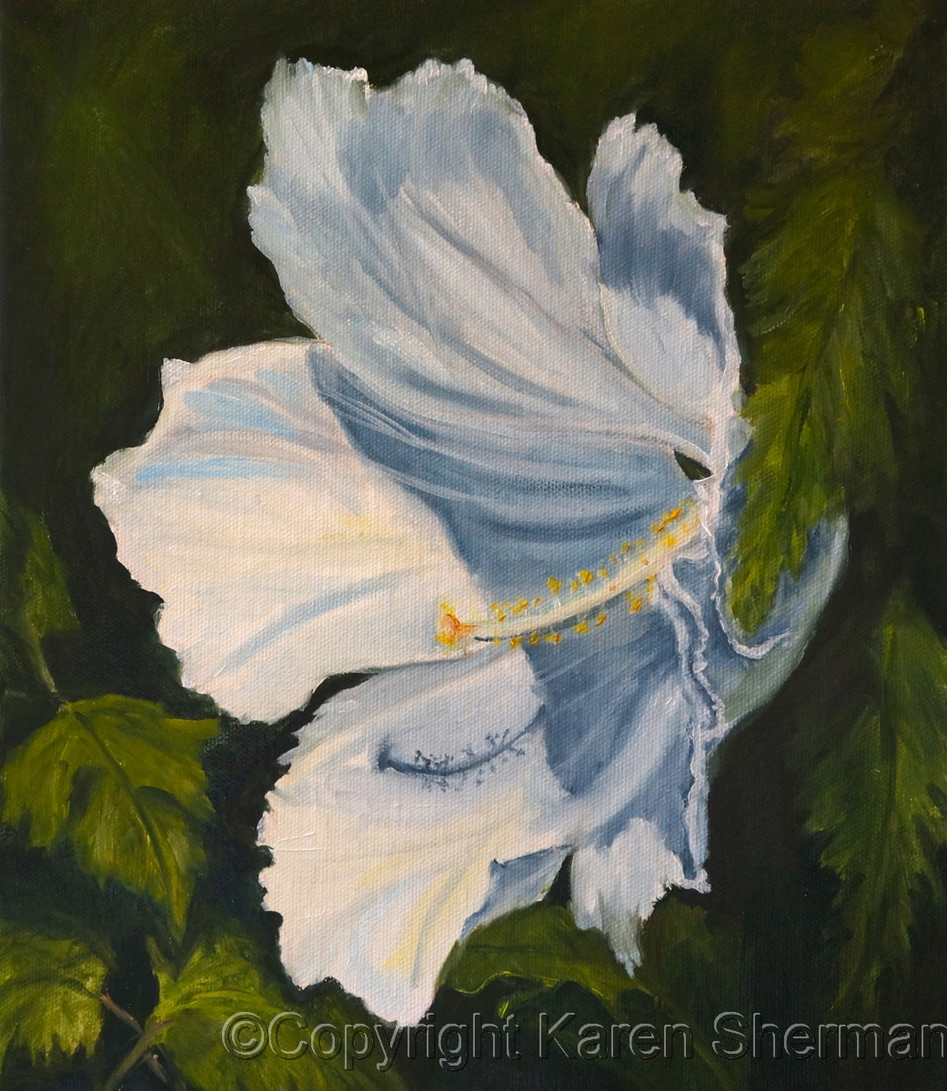 """White Hibiscus 40"" (large view)"