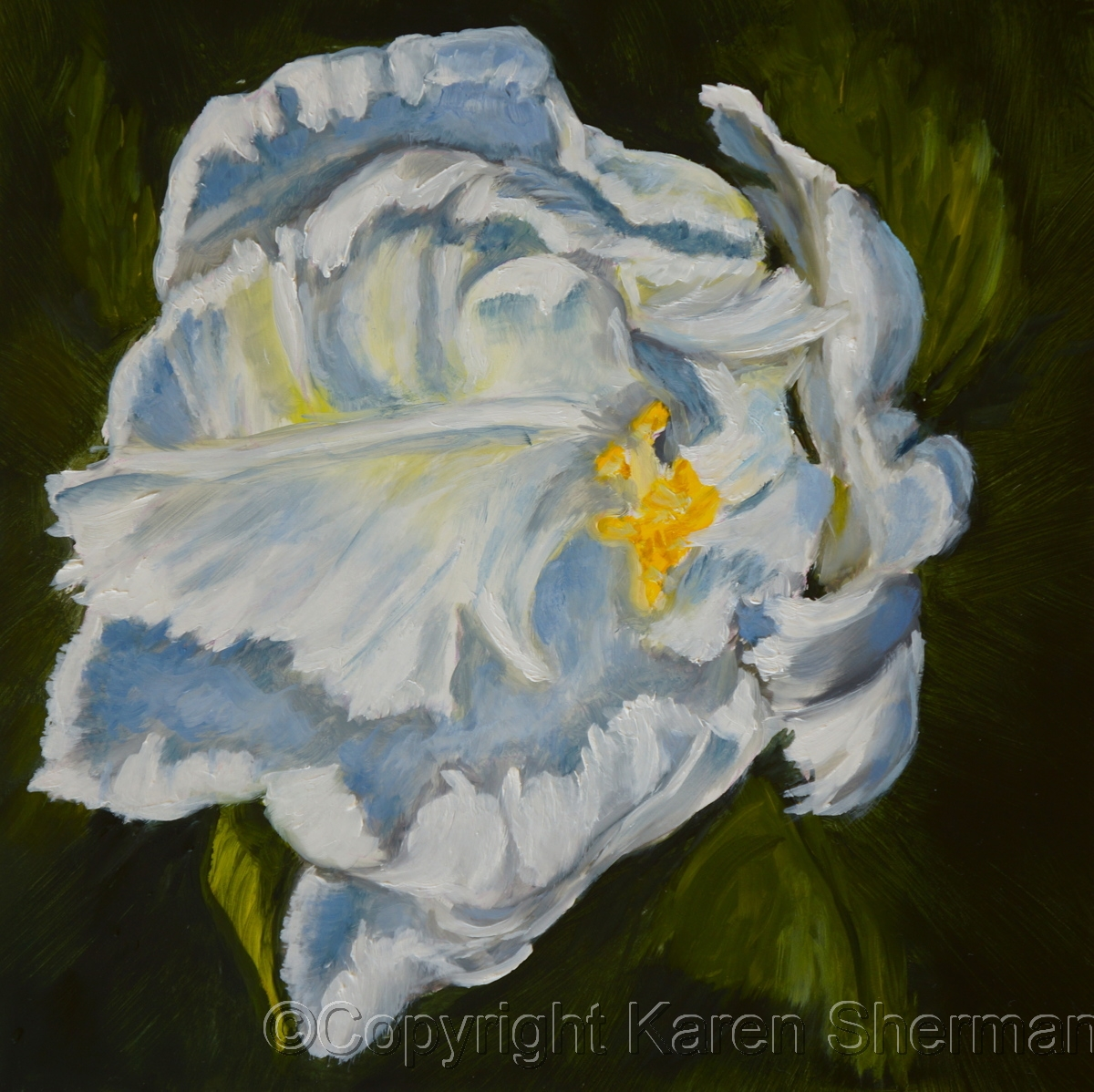 """White Hibiscus 10"" (large view)"