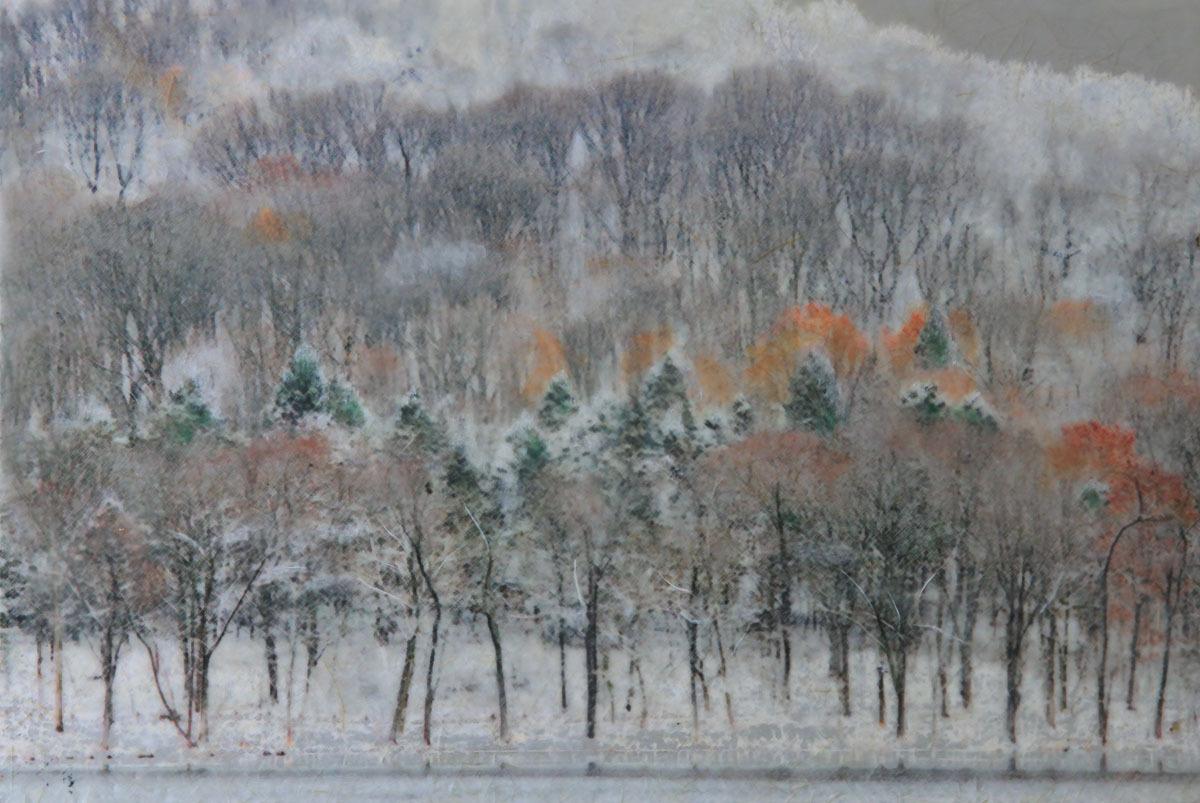 Radnor Snow  (large view)