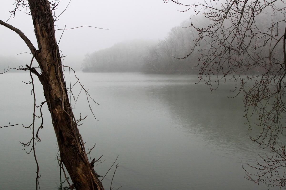 Foggy Lake (large view)
