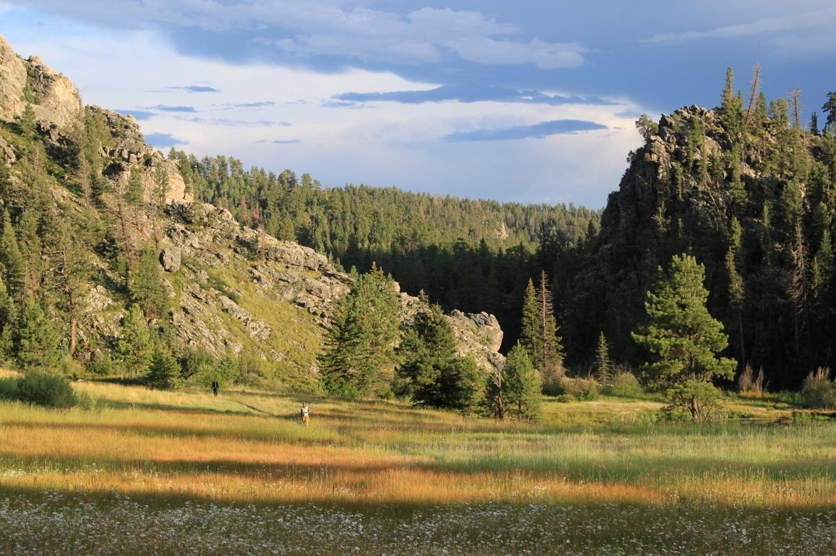 Walking Meditation (large view)