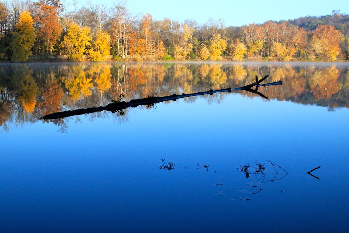Fall at Radnor Lake  (large view)