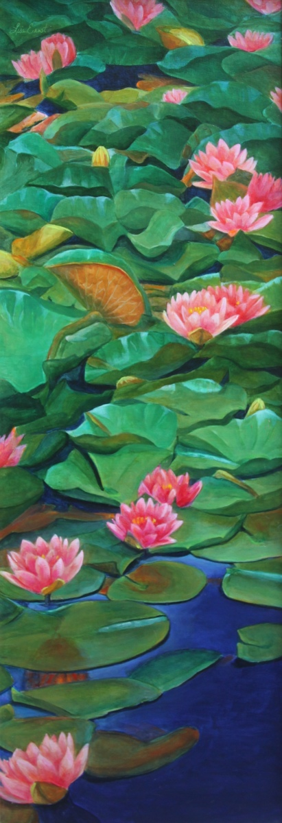 Summer Water Lilies  (large view)