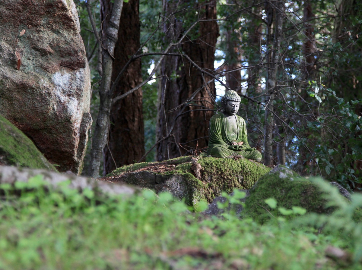 Buddha Nature (large view)