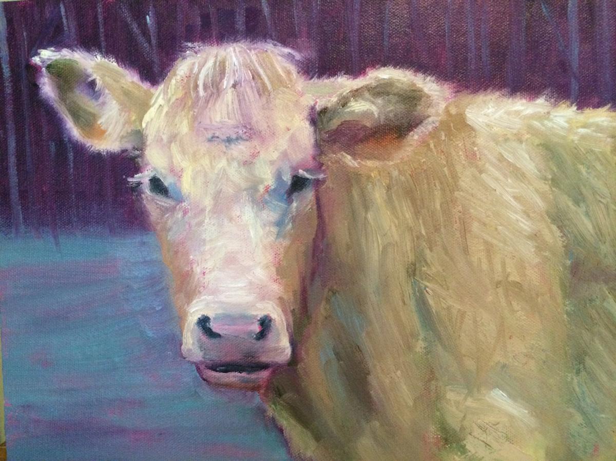 Cow Portrait (large view)