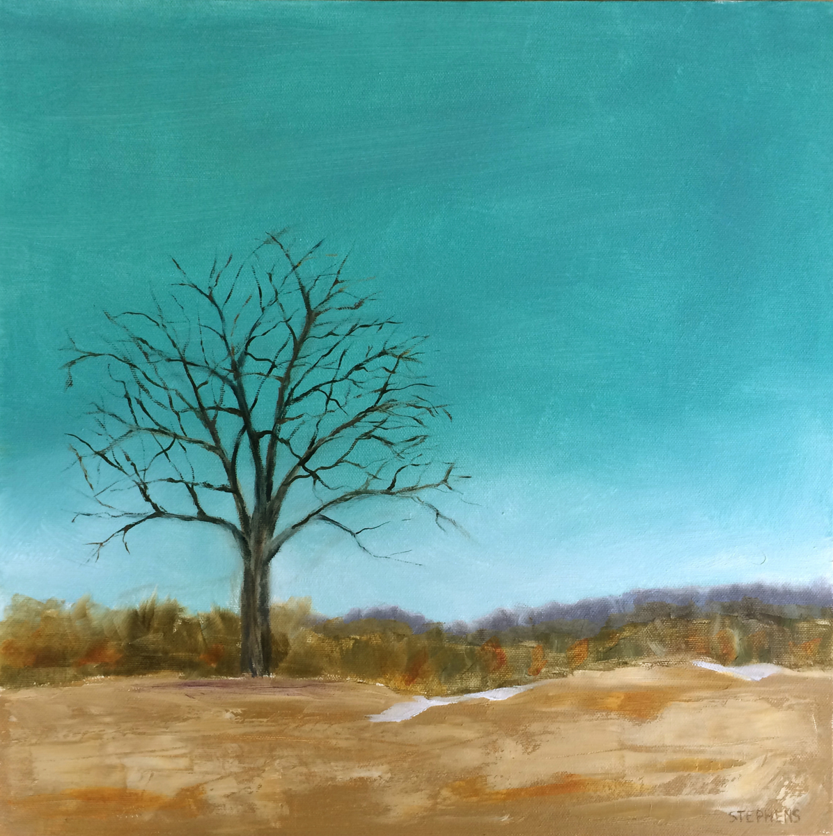 Lone Tree (large view)