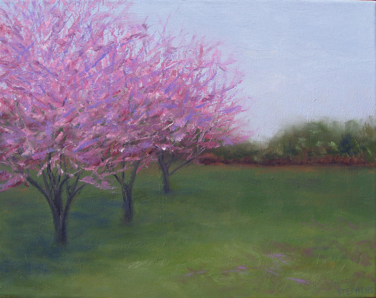 Redbud Trio (large view)