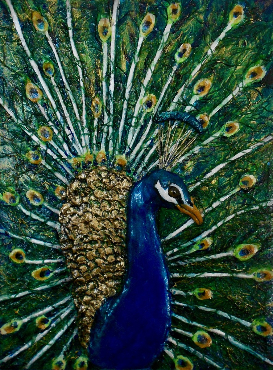 Peacock  (large view)
