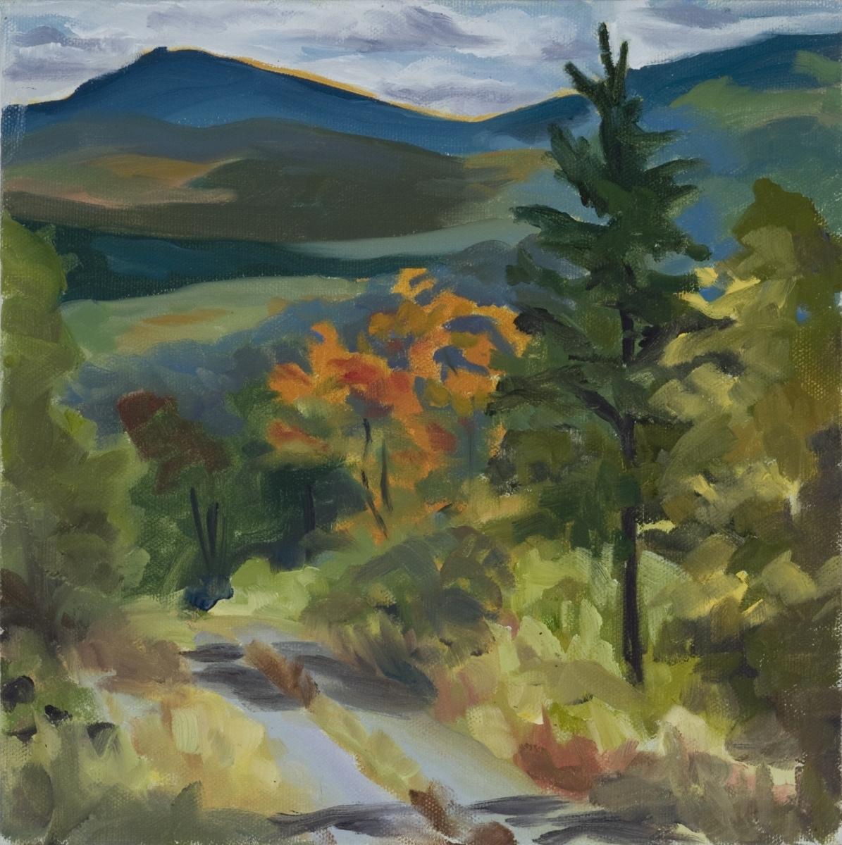 landscape Maine mountains; logging road; autumn  (large view)