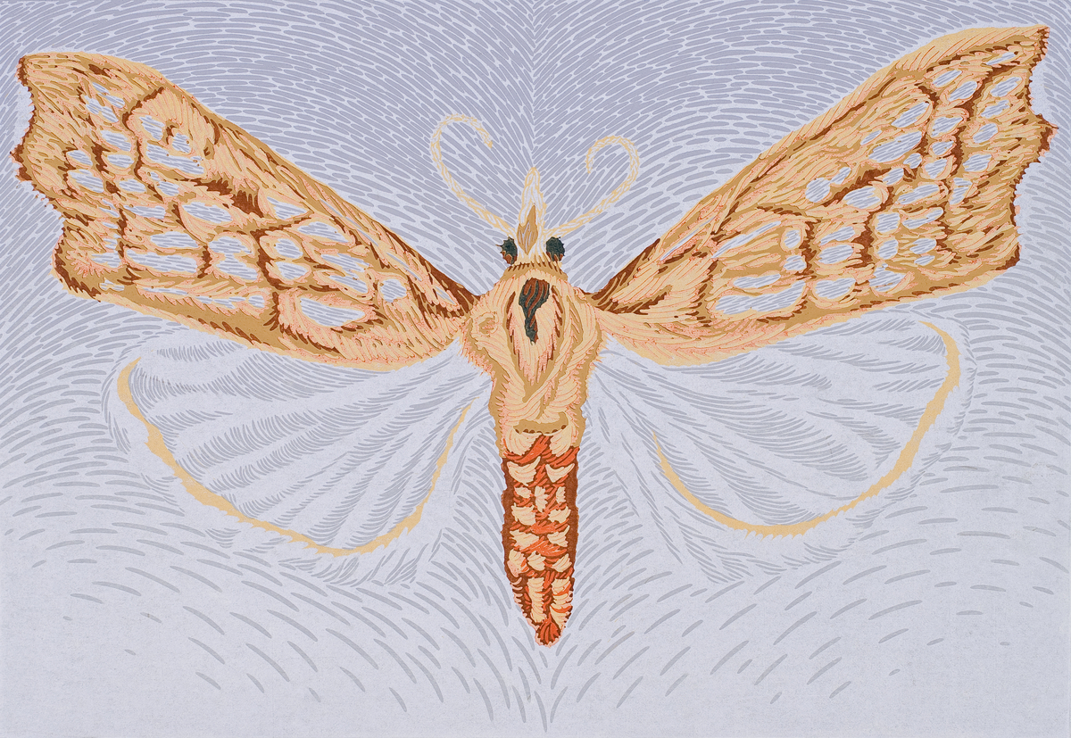 Moth Four (large view)