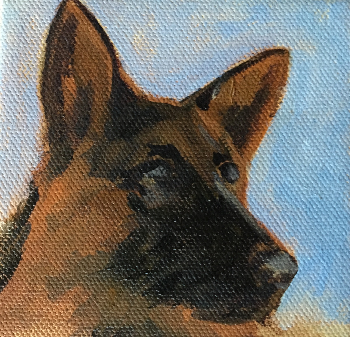 German Shepherd (large view)