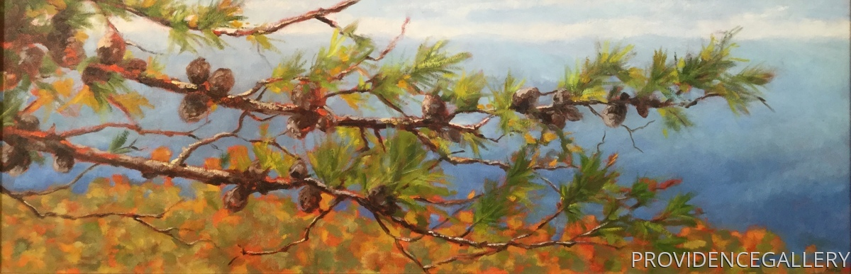 Blue Ridge Pinecones (large view)