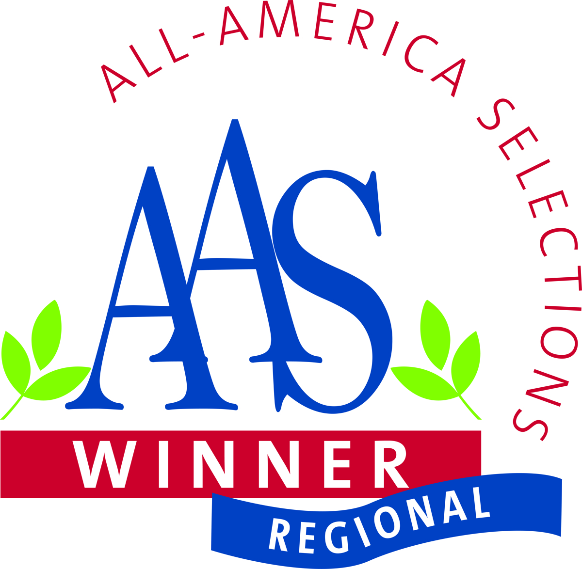 AAS Regional Winner (large view)