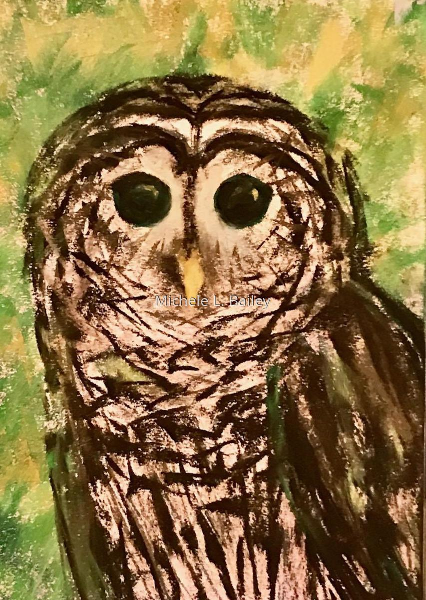 Barred Owl (large view)