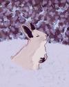 Sadie the Snow Bunny (thumbnail)