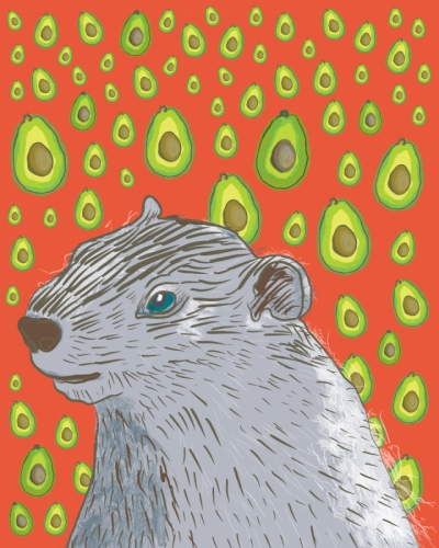 Quentin the Groundhog - Avocado Dreaming (large view)