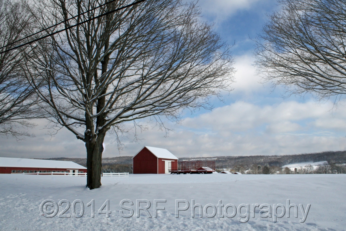 Winter Farm (large view)