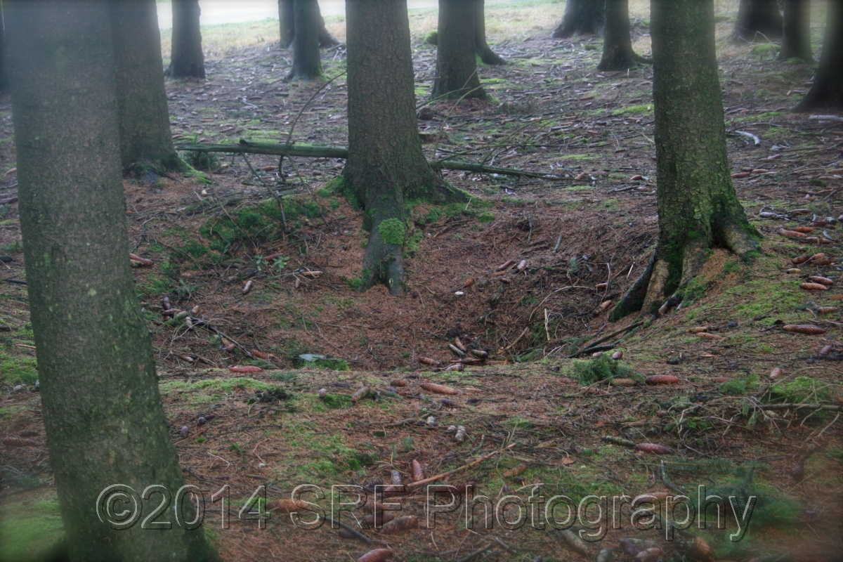 Foxholes (large view)