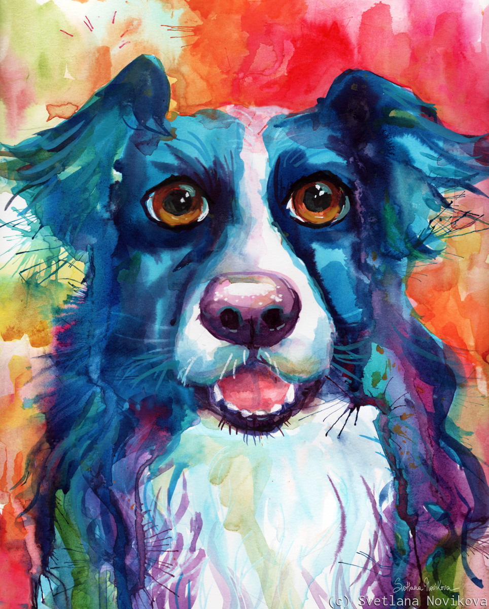 Colorful Border Collie painting by Svetlana Novikova (large view)