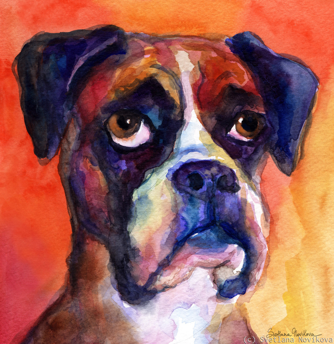 Funny Watercolor boxer dog painting (large view)