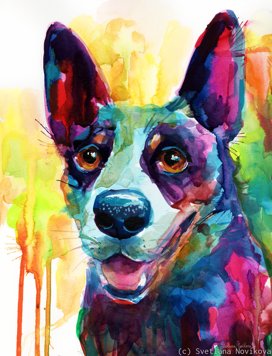 Blue Heeler Australian Cattle Dog painting (large view)
