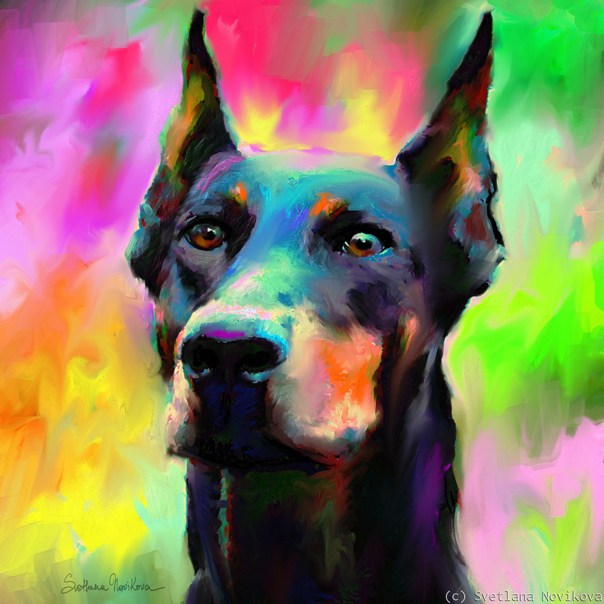 Doberman Pincher 1 (large view)